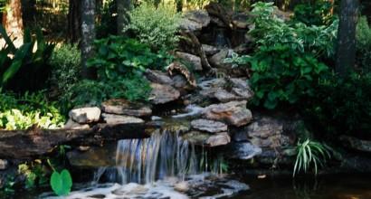 CODI Waterfalls 5